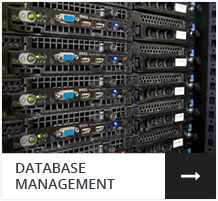 Database Management in Los Angeles, Culver City & Santa Monica CA